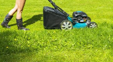 8 Simple Lawn Care Tips for a Beautiful Lawn