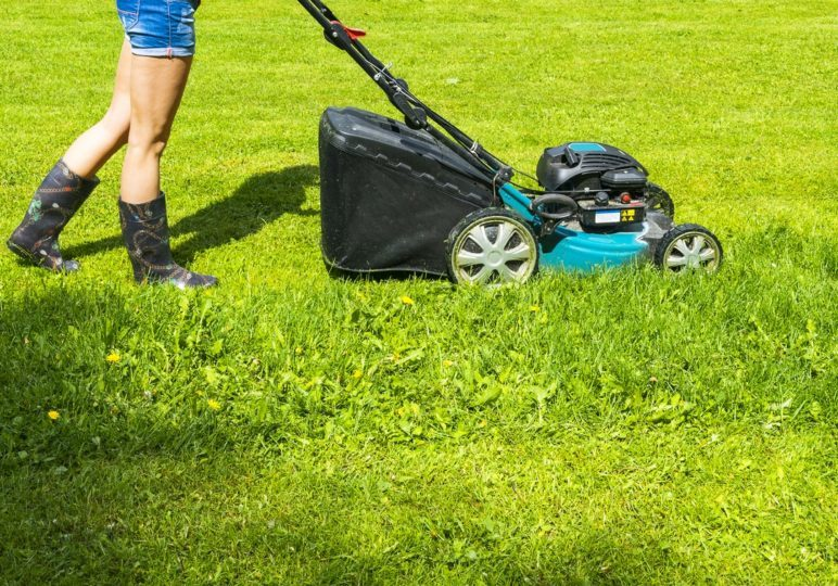 8-Simple-Lawn-Care-Tips-for-a-Beautiful-Lawn.jpg